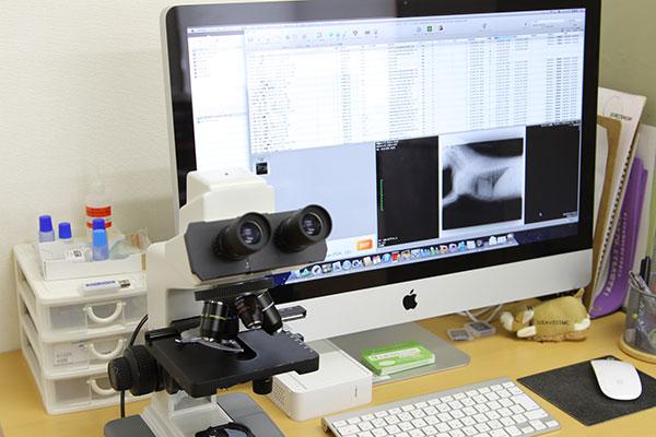 顕微鏡・モニター